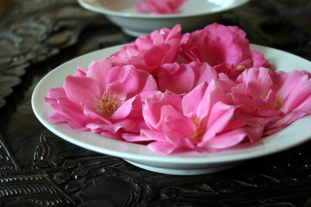Matrimonial site like flowers in plates